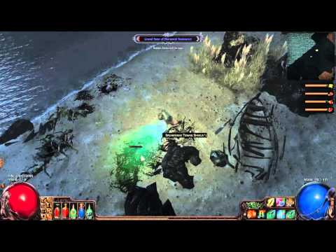 Path Of Exile: Builds For Beginners