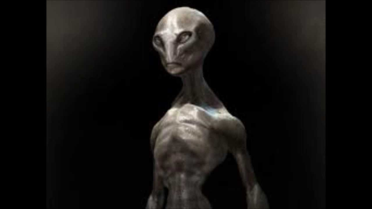 real types of aliens   pixshark     images galleries