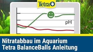 Nitrat im Aquarium abbauen -Tetra BalanceBalls
