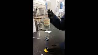 07 Pasteur pipette