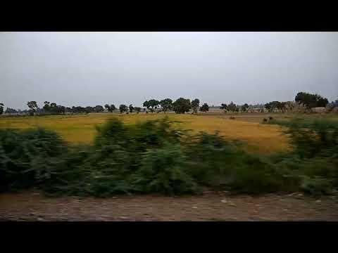 Superfast Indian train through farmland - तेज़ रफ़्तार रेलगाड़ी, और हरे भरे खेत