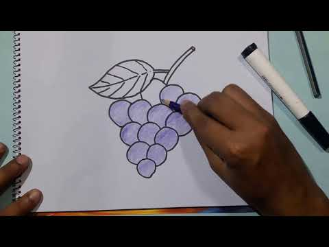 How To Draw Grapes Step By Step For Beginners Easy Drawing For Kids Pixel Drawing Academy Youtube