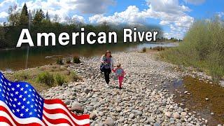American River/Лосось/Олени/Индейки/Карантин в Сакраменто/США/Природа Калифорнии