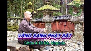Vãng Sanh Phật Sát - Thầy Thích Pháp Hòa ( Chùa A Di Đà Virginia Ngày 22.9.2019 )