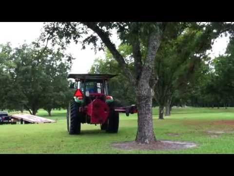 Jeff Hunter shakes a pecan tree at an orchard at Camp Summers & Manget in Cameron, S.C. 09 Sept 2014