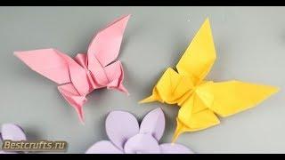 Бабочки Феникс из бумаги в технике оригами