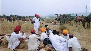 मारवाड़ी असली देशी भजन 2017 | desi bhajan, Rajasthani desi bhajan, मारवाडी विडियो | राजस्थानी विडीयो