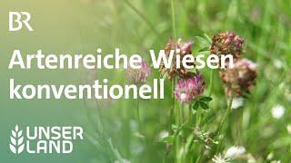 Artenreiche Wiesen | Unser Land | BR Fernsehen