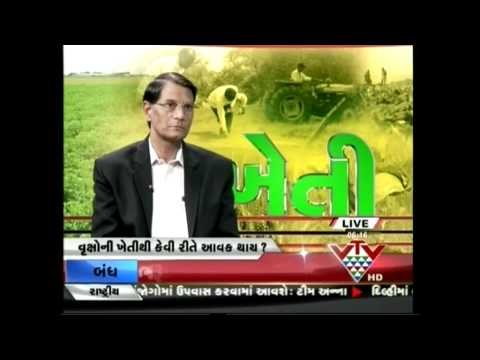 VTV - TREE FARM TREND OPPOSE THE GLOBAL WARMING ISSUE - KHETI SPECIAL