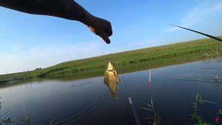 Карась на поплавок Рыбалка на ПОПЛАВОК в лесном озере Рыбалка 2021 Ловля карася