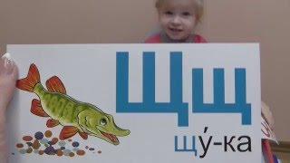 Учим алфавит с карточками - видео урок для малышей от Леди Инга