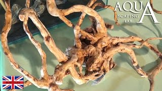 Aquascaping Lab - Aquarium Woods And Roots, Jati, Mopani, Java, Driftwood Treatment For Amber Color