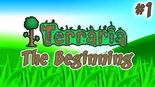 Terraria | The Beginning | Ep.1, Dumb and Dumber