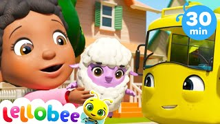 Mary Had a Little Lamb! | +More Nursery Rhymes | ABCs and 123s | Learn with Little Baby Bum