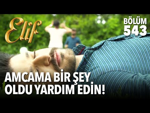 Amcama bir şey oldu yardım edin! (543.Bölüm): Resmi Sosyal Medya Hesaplarımız https://www.elifdizisi.tv https://www.twitter.com/elifdizisi https://www.facebook.com/elifdizisi https://www.instagram.com/elifdizisi https://www.flickr.com/elifdizisi