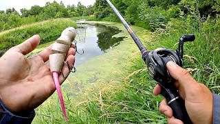 BANK FISHING w/ Topwater in THICK Grass!!!