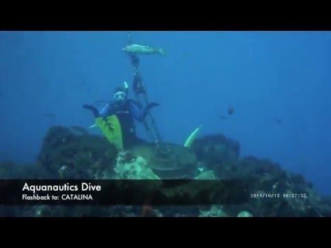 Aquanautics Dive: Throwback! October 2014 in Catalina