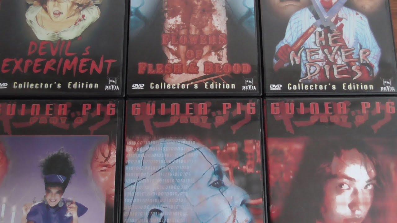 dvd kritiken guinea pig 1 6 1985 1990