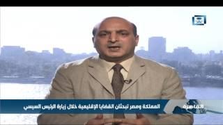 خبير في العلاقات الدولية: المملكة ومصر تبحثان القضايا الإقليمية خلال زيارة الرئيس السيسي