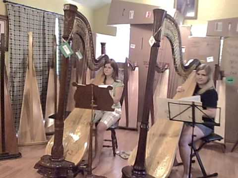 Johnny Comes Marching Home - Harp Duet arr. Rees-R...