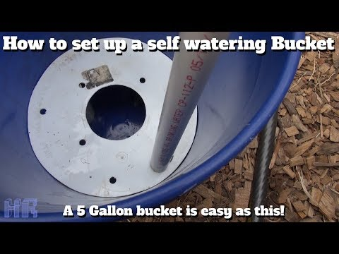 ⟹ HOW TO Set Up 5 Gallon Self Watering Buckets | Gardening | HeirloomReviews