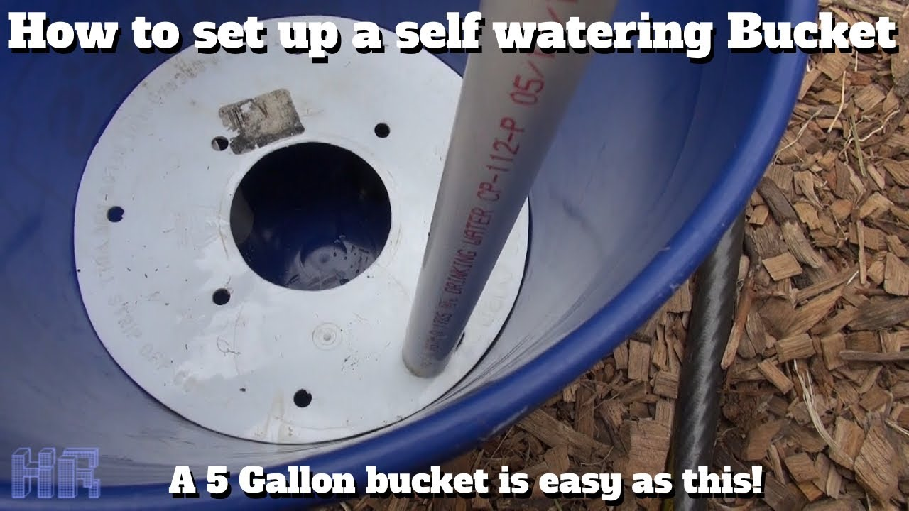 ⟹ HOW TO set up 5 gallon self watering buckets | Gardening |  HeirloomReviews - YouTube