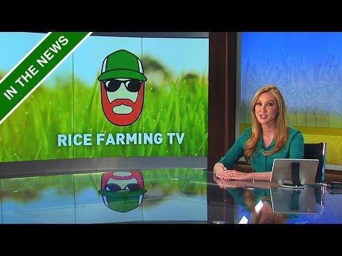 California Rice in the News! | RFD-TV