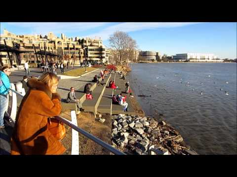 Washington DC and Georgetown Waterfront on Sunny Winter Day in January - Short HD Video Tour