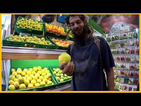 RAW FOOD TIPS: BUYING FRUIT AT THE SUPERMARKET?