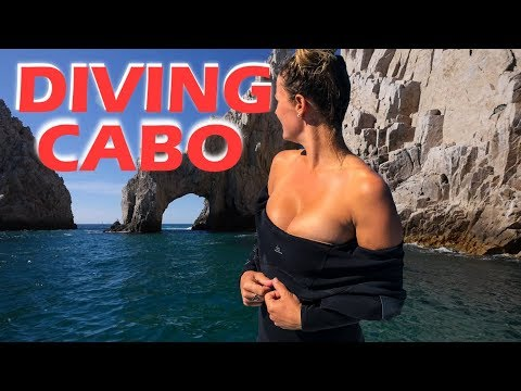 Scuba Diving Cabo San Lucas - Sailing Doodles Episode 65