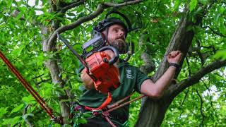 Conservation Arborists of Epping Forest