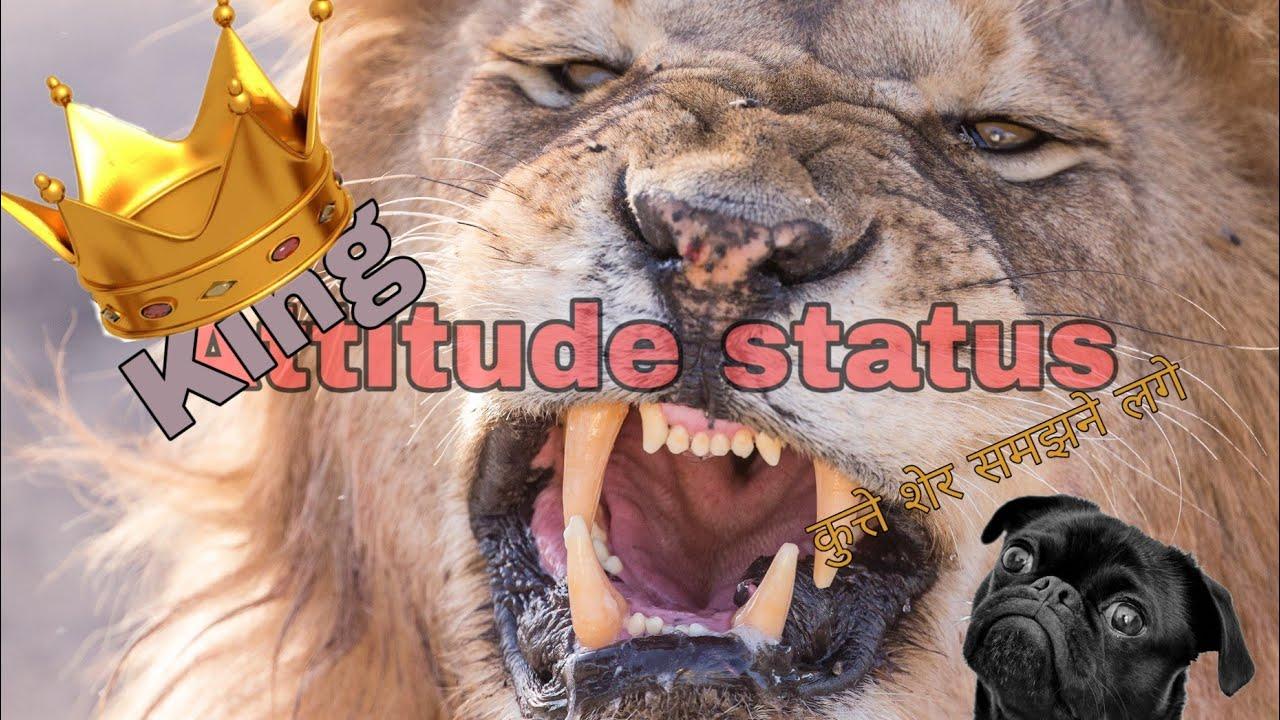 King Attitude status | WhatsApp status | Potrait | Lion Status