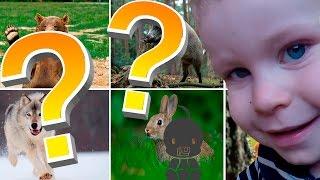 УГАДАЙ ЖИВОТНЫХ. Учим животных с малышом. Развивающая игра УГАДАЙ ЖИВОТНЫХ