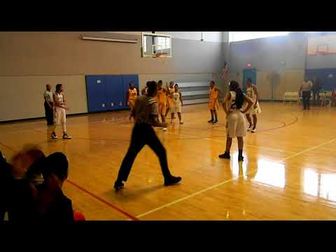 Detroit West Side Academy Girls Basketball vs Detroit Pershing 2017-18