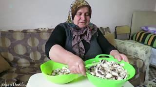 Mantar yemeği tarifi Şadiye anne yemekleri