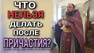 Download Что нельзя делать после причастия. о.Максим Каскун Mp3 and Videos