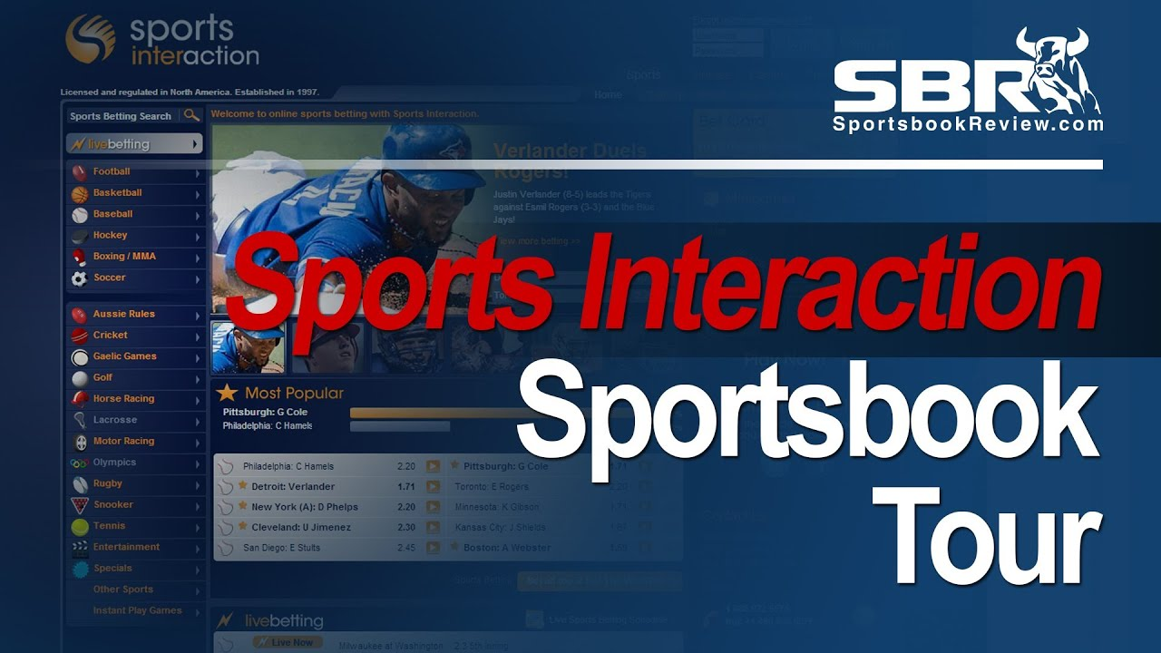 Sbr sports betting review winning without thinking a guide to horse racing betting systems