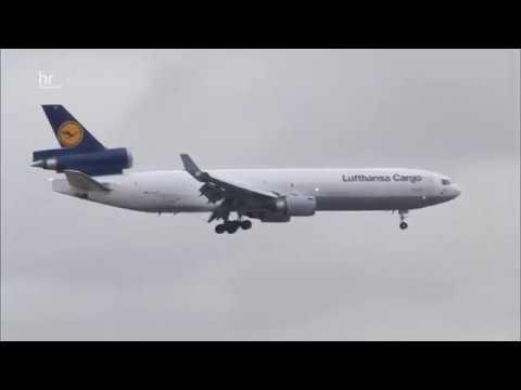 Lufthansa Cargo - Ein Flieger voller afrikanischer Rosen