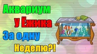 Шарарам Как получить аквариум у Ёжика?!