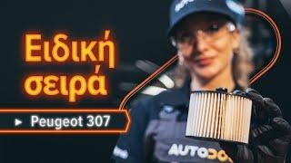Πώς αλλαζω Αμορτισερ πισω πορτας SKODA ROOMSTER Praktik (5J) - οδηγός βίντεο