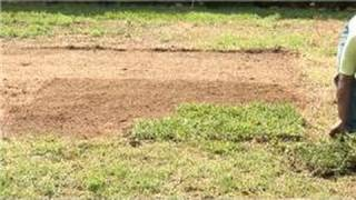 Grass & Lawn Care : Zoysia Grass Planting Tips