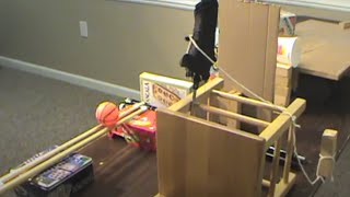 Automatic Dog Feeder Chain Reaction