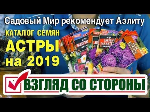 КАТАЛОГ СЕМЯН - АСТРЫ на 2019. Садовый Мир рекомендует Аэлиту