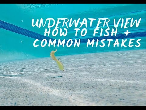 TOP SALTWATER BAITS For FLOUNDER, TROUT, REDFISH - HOW TO FISH + UNDERWATER FOOTAGE