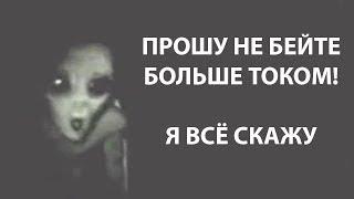 Download Топ 5 Пришельцев - Неудачников/ Пять жёстких допросов инопланетян Mp3 and Videos