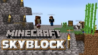 CHANGE PLACES! - Minecraft Skyblock