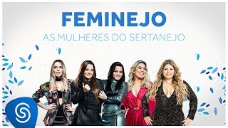Feminejo: As Mulheres do Sertanejo - Mix Sertanejo 2018