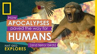 How Apocalypses Paved the Way for Humans (and terror birds) | Nat Geo Explores