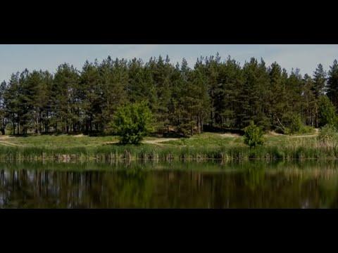 Озеро Круглое. Кто снова покушается на воронежский памятник природы