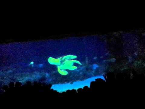 Big Blue World Nemo ride Epcot Orlando -  Florida